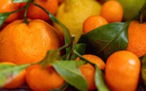 sector citricos naranjas